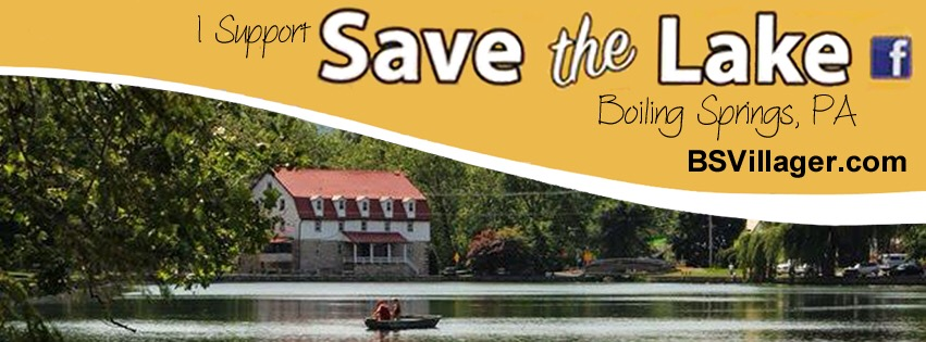I Support Save the Lake